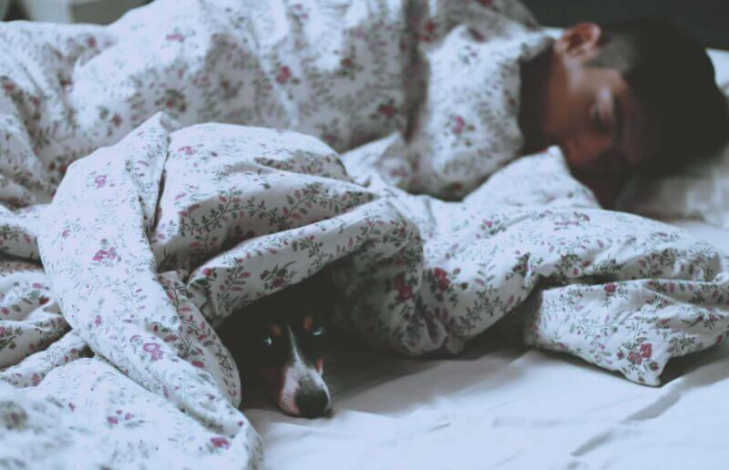 Sömnföreläsning